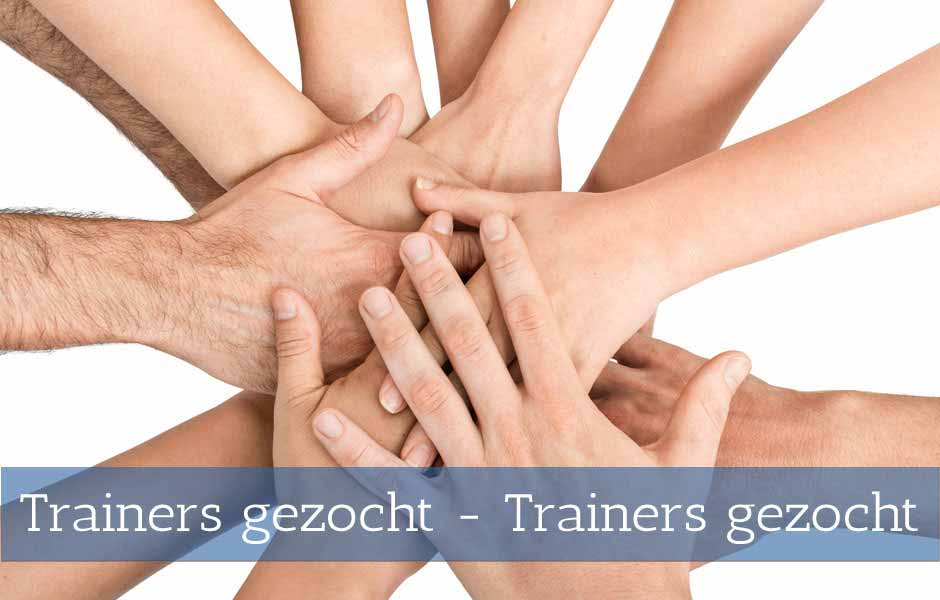 3to1 zoekt trainers
